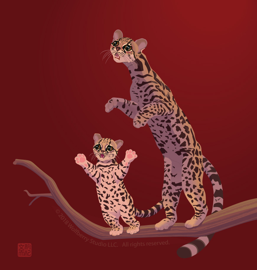 Margay family trapped on trees